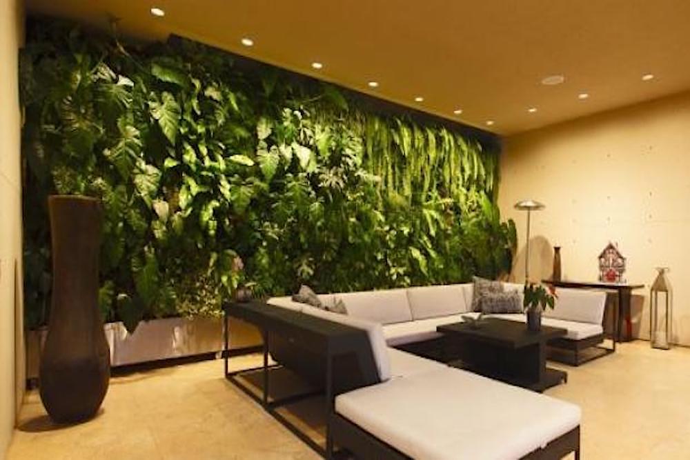 Jardín interior salon