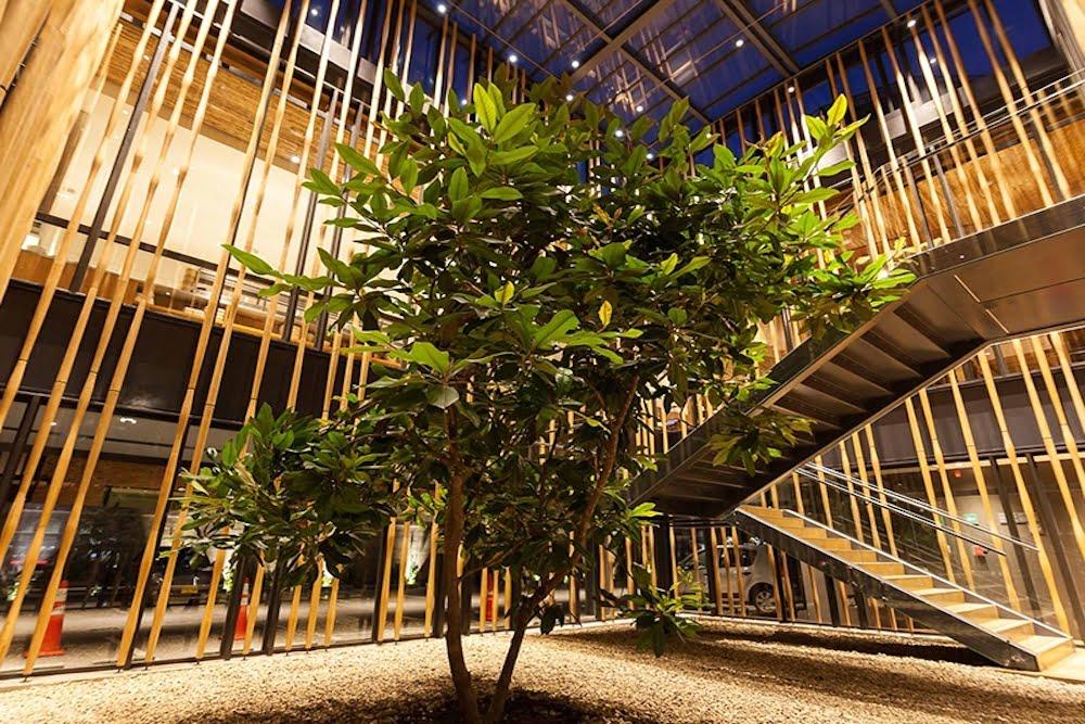 jardin interior bajo escalera