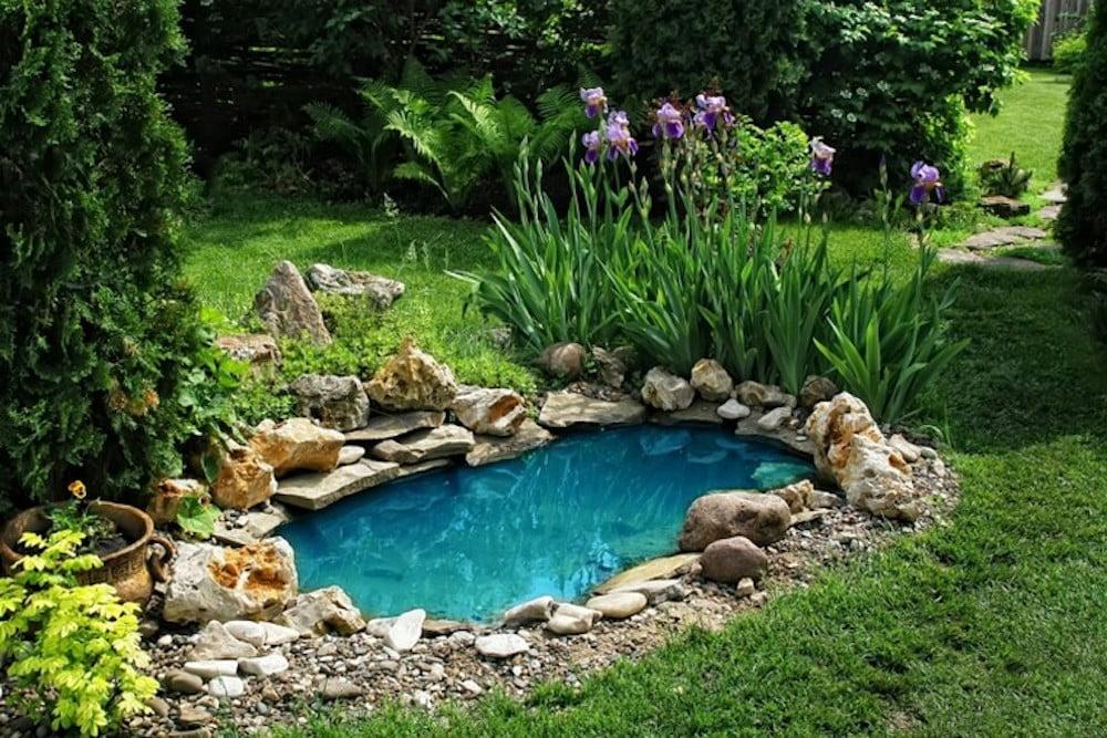 jardines pequeños con estanque.