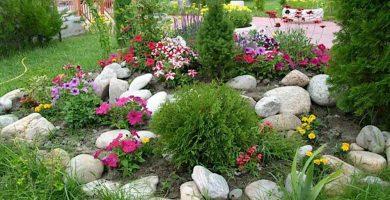 rocallas en el jardín
