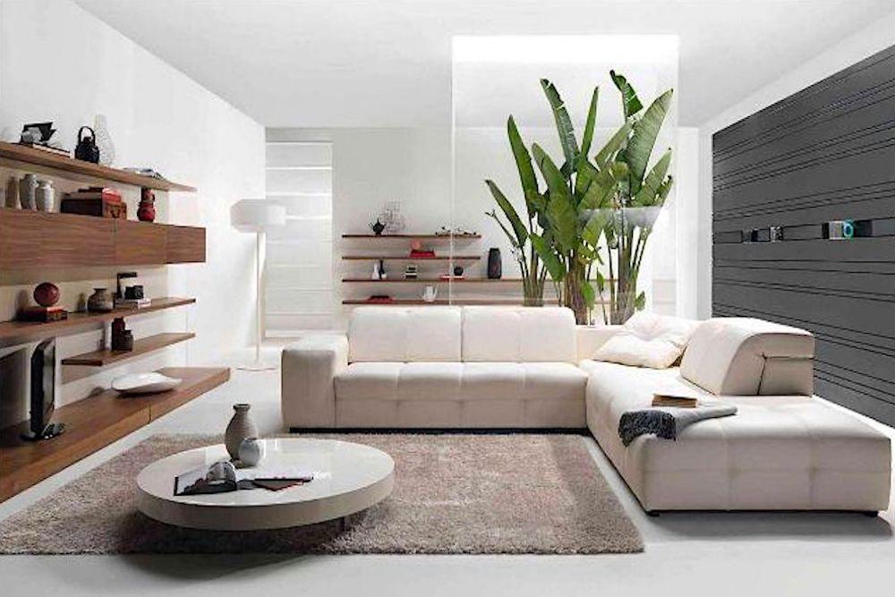 Decorar salones modernos con plantas