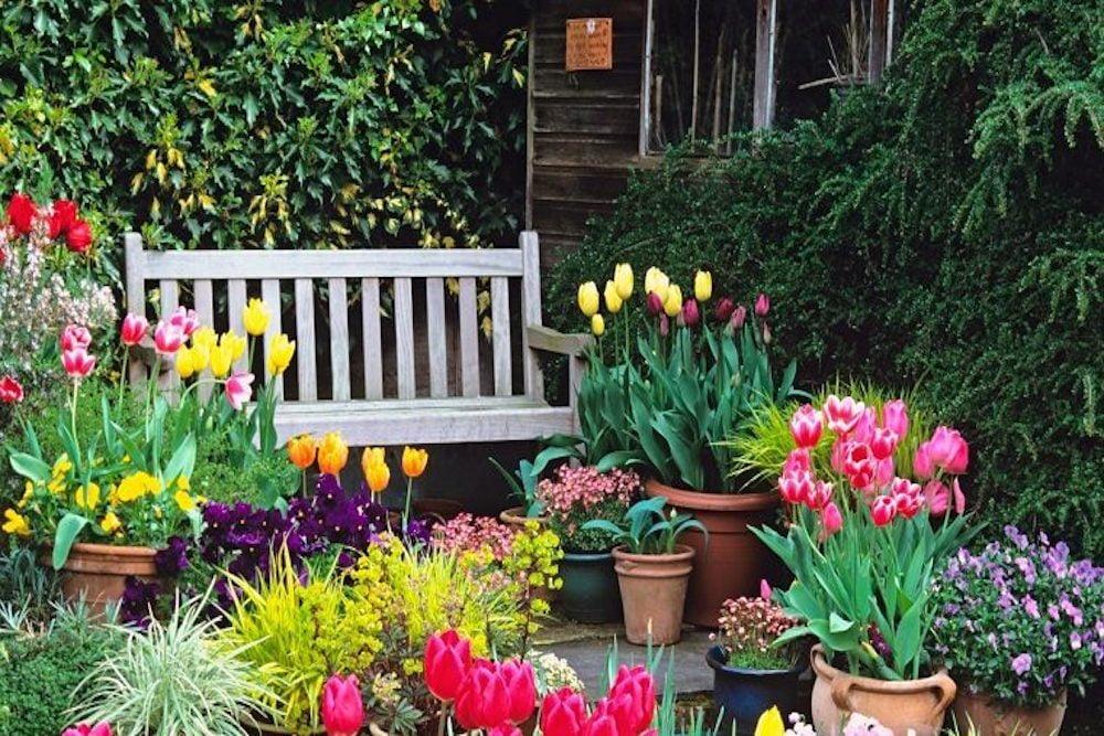 jardin decorados con flores